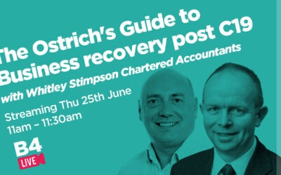 The Ostrich's Guide to Business recovery post C19 video chat